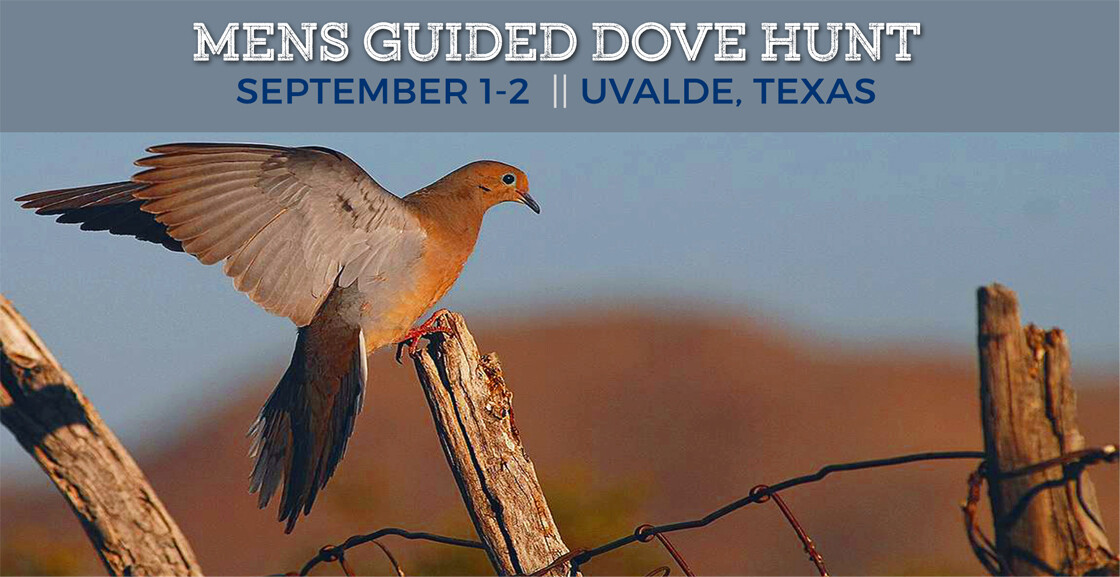 Mens Guided Dove Hunt
